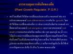 plant growth regulator p g r10