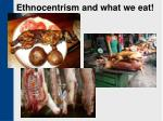 ethnocentrism and what we eat