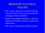 bedouin cultural values