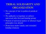 tribal solidarity and organization