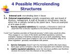 4 possible microlending structures