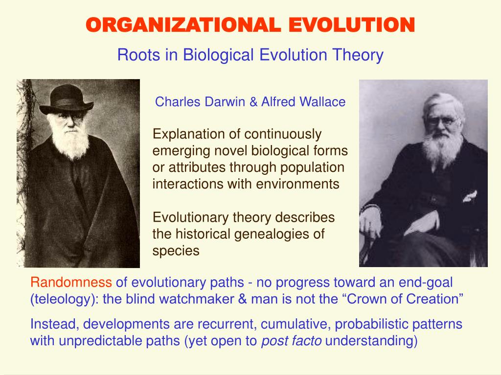 organizational evolution l.