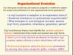 organizational evolution6