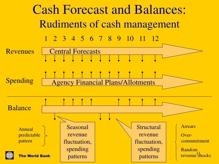 Cash Forecast and Balances: