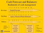 cash forecast and balances rudiments of cash management