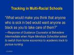 tracking in multi racial schools