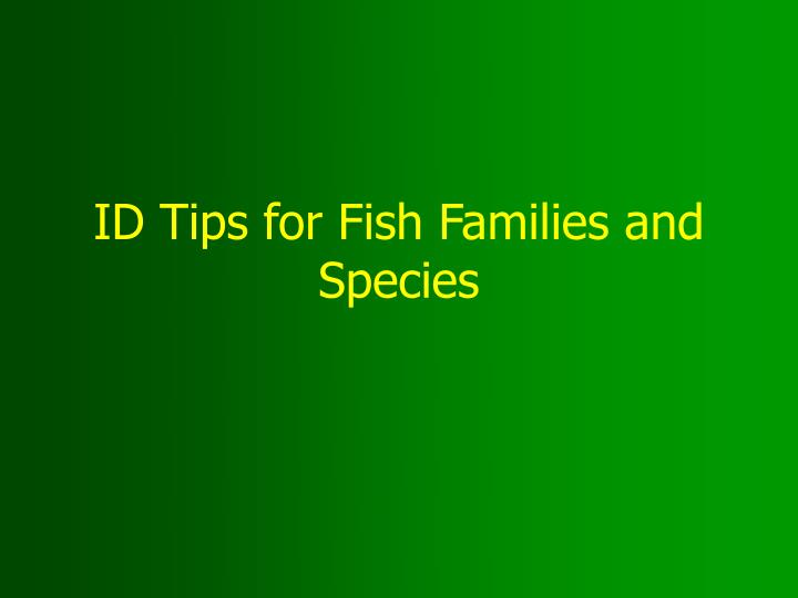 id tips for fish families and species n.