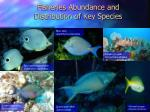 fisheries abundance and distribution of key species