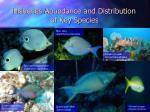 fisheries abundance and distribution of key species30