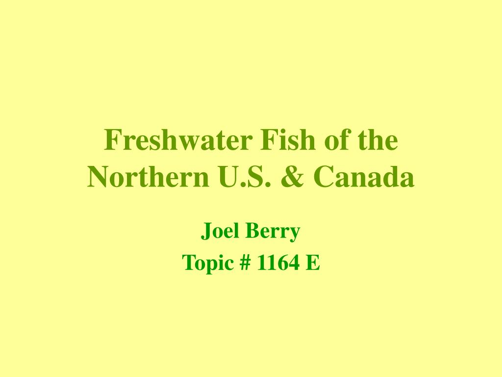 freshwater fish of the northern u s canada l.