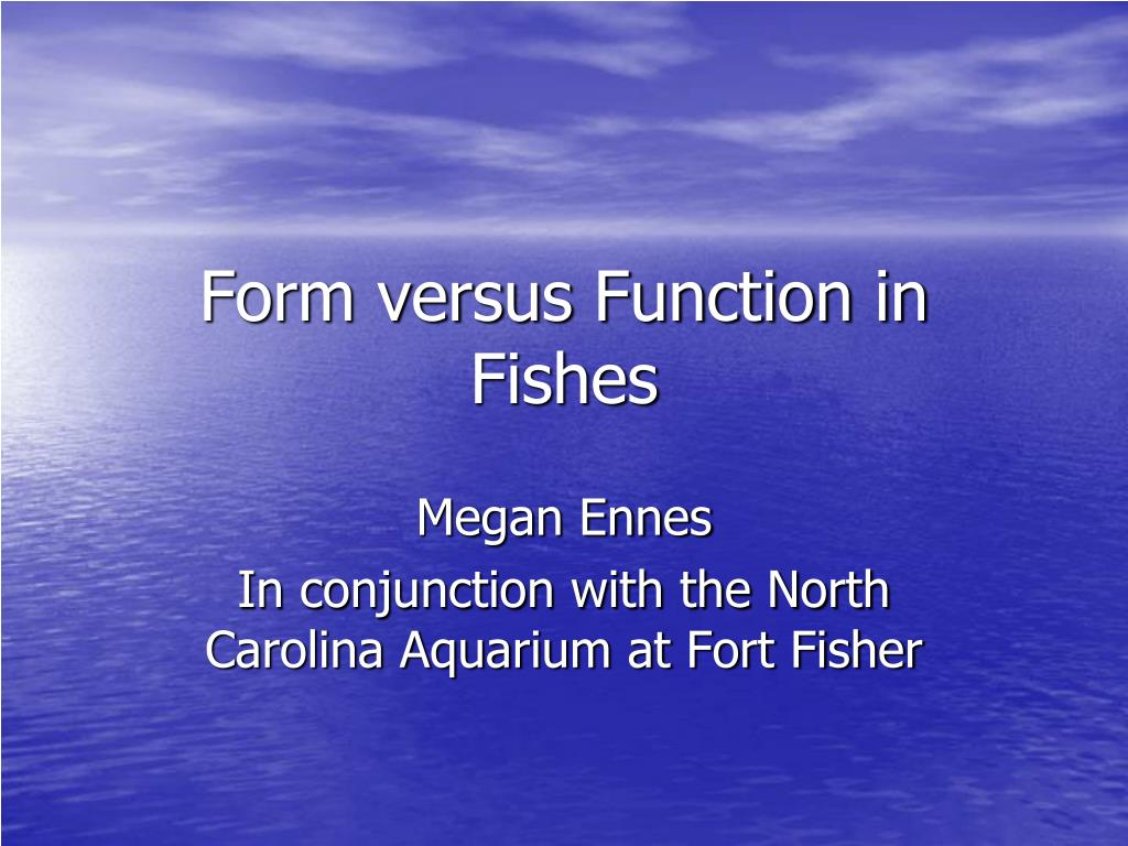 form versus function in fishes l.
