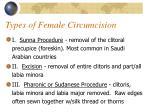 types of female circumcision