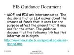 eis guidance document