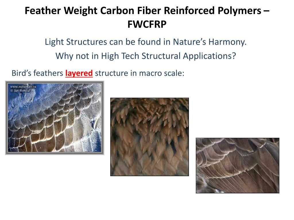 feather weight carbon fiber reinforced polymers fwcfrp l.