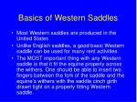 basics of western saddles