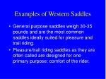 examples of western saddles