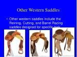 other western saddles