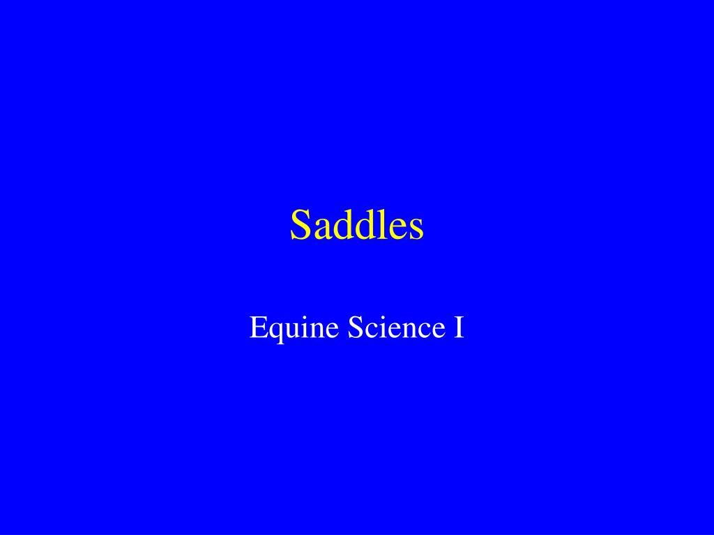 saddles l.