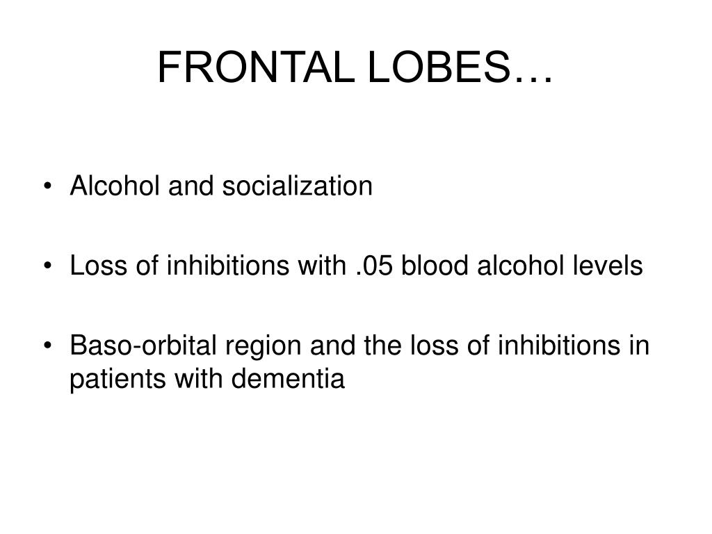 FRONTAL LOBES…