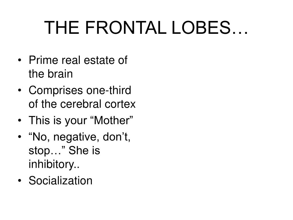 Prime real estate of the brain