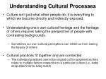 understanding cultural processes