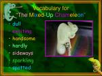 vocabulary for the m ix ed up cham ele on