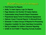 bucs reports for all needs