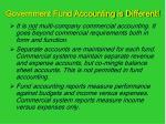 government fund accounting is different