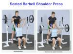 seated barbell shoulder press
