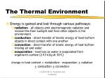 the thermal environment
