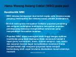hama wereng batang coklat wbc pada padi11