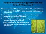 penyakit hawar daun jingga bacterial red stripe brs pada padi