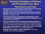 promising strategies in wellness and preventative care work that donors can fund