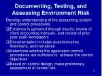 documenting testing and assessing environment risk
