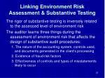 linking environment risk assessment substantive testing