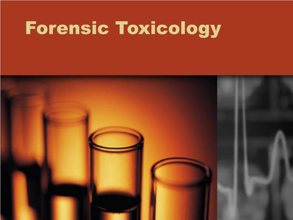 forensic toxicology l.