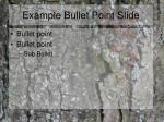 example bullet point slide