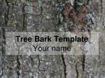 tree bark template your name
