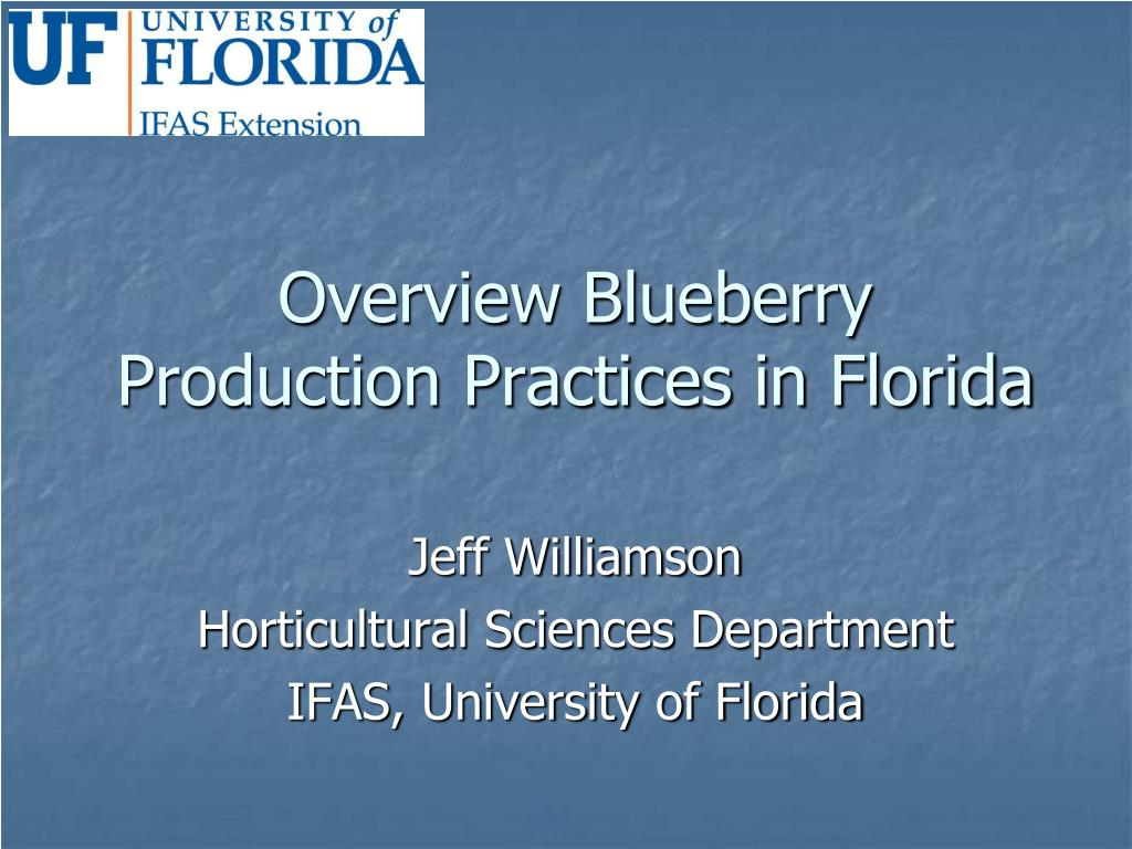 overview blueberry production practices in florida l.