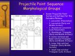 projectile point sequence morphological groups