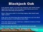 blackjack oak11