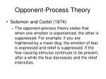 opponent process theory26