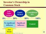 investor s ownership in common stock