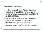 social criticism5