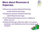 more about revenues expenses