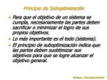 principio de suboptimizaci n11