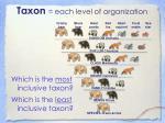taxon each level of organization