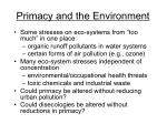 primacy and the environment
