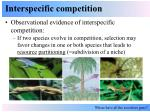 interspecific competition9