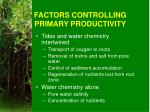 factors controlling primary productivity